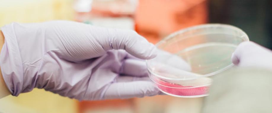 La tecnología fotovoltaica puede detectar y curar el cáncer